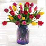 20 Stem Tulips For Flower Delivery