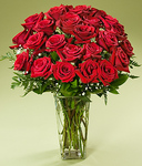 24 Stems Red Ruby Roses For Flower Delivery!